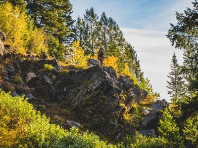 Hunting Idaho has many advantages, including guaranteed tags